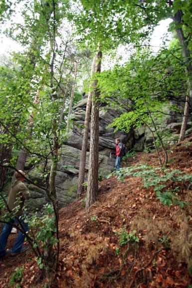 WSPINKA uzyskała dostęp do skał na wzgórzu Szczytnik