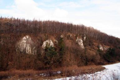 Wąwóz Ostryszni - nowe drogi wspinaczkowe